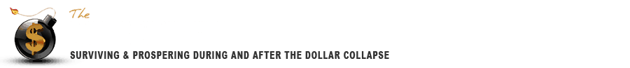 http://www.dollarvigilante.com/wp-content/uploads/2015/02/newlogowp.png