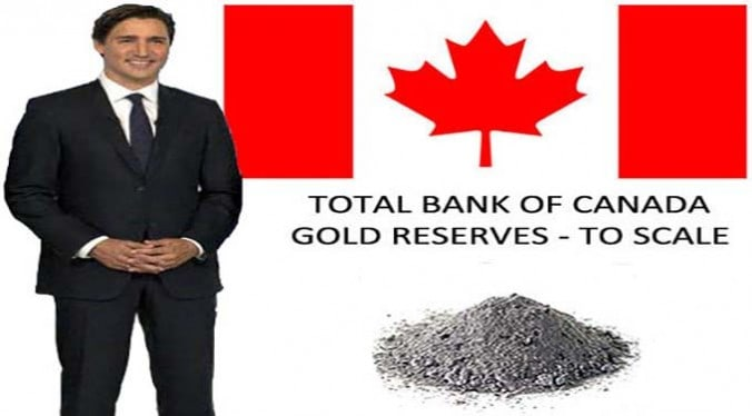 Total Bank of Canada Gold Reserves to Scale 2016 - Justin Trudeau - dust header - The Dollar Vigilante